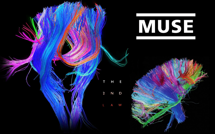 muse the second law full album free download