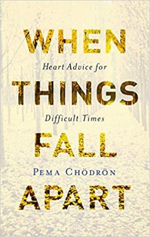 When Things Fall Apart Review