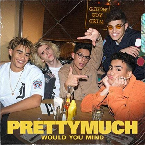 """""""Would You Mind"""" Single Review"""