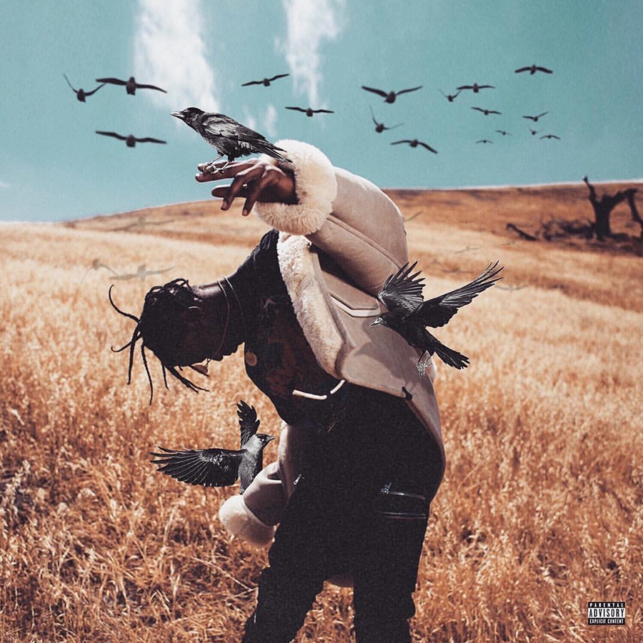 """""""Days Before Rodeo"""" Mixtape Review"""