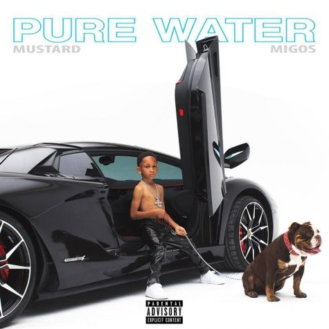 """""""Pure Water"""" Single Review"""